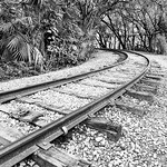 Off to have an adventure... . . #gatorland #orlando #train #tracks #railroad #railroadtracks #adventure #landscapephotography #landscape #industrial #naturephotography #nature #blackandwhitephotography #blackandwhite #outdoors #florida thumbnail