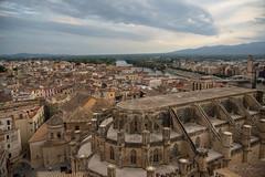 El Renaixement de Tortosa (rfabregat) Tags: tortosa terresdelebre xxiiifestadelrenaixement renaixement tradició tradition festa cultura culture