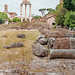 Forum ruins