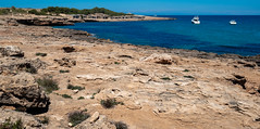 Ibiza, Spain, 2018. (CWhatPhotos) Tags: cwhatphotos photographs photograph pics pictures pic picture image images foto fotos photography artistic that have which contain olympus camera holiday holidays hols hol june 2018 ibizan ibiza san antonio bay june2018 punta pedrera rocky rocks crag quarry old worked ancient water blue sea waters edge pool