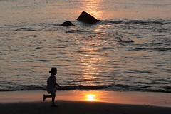 Chasing the Sun (seiji2012) Tags: 江の島 夕日 反射 日没 シルエット enoshima sunset sea beach silhouette japan child reflection