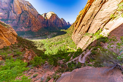 Zion_728-HDR (allen ramlow) Tags: zion national park springdale utah landscape mountain canyon outdoors nature sony a7iii