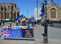 BREXIT will be STOPPED by the people (afagen) Tags: london england uk unitedkingdom greatbritain westminster protest brexit sign