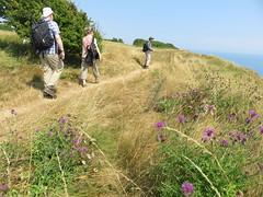 UK - Kent - Near Capel-le-Ferne - Walking along North Downs Way (JulesFoto) Tags: uk england kent centrallondonoutdoorgroup clog capelleferne walking northdownsway englandcoastpath coast