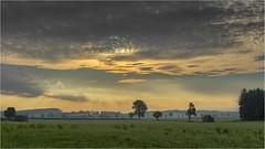 Morgenstund (Robbi Metz) Tags: deutschland germany bayern bavaria reischenau augsburgwestlichewälder landscape trees sky clouds sunrise colors canoneos