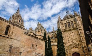 Paseando por Salamanca