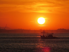 Sunset in Guanabara (Antonio Dourado│Fotografias) Tags: canon canonsx50hs canonpowershotsx50hs canonsx50 canonpowershotsx50 canonpowershot riodejaneiro rio brasil brazil baíadaguanabara bay baía barco boat sunset sun golden shadows cielo