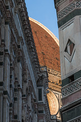 peeking beauty (Angeeeeelaaaaa) Tags: brunelleschi florence firenze