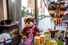Hey there, Teddy! (sasi.yamaha) Tags: teddy teddybear toy fluffy spongy cute beautiful bokehful bokehlicious bokeh wideangle sharp vibrant usaflag usa america cincinnati ohio graeters cups contrast heart love affection