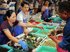 Seafood market (markb120) Tags: market mart emporium rialto fish sea food seafood dealer trader vendor tradesman seller trafficker man person human individual humanbeing fellow male woman female she wife oldwoman feminine