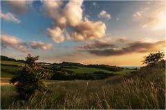 Die friedliche Welt des Herr`n Rosenbusch (linke64) Tags: thüringen deutschland germany natur landschaft wolken himmel abend bäume berge hügel wiese wald rosenbusch