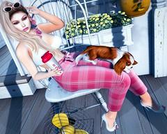 Front Porch Relaxing (Sparkle Mocha) Tags: eudora3d seniha chicchica rama mandala zoom spaniels cosmopolitan fameshed go glasses jian firestorm secondlife mesh avatar porch blonde sl fashion hair drink catya catwa maitreya h