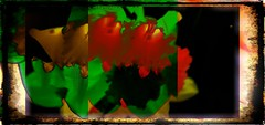 Narcisos (seguicollar) Tags: imagencreativa photomanipulación art arte artecreativo artedigital virginiaseguí magnolia flower flores morado rosa rojo verde green pink purple closeup panosabotaje panovisión samsungs8