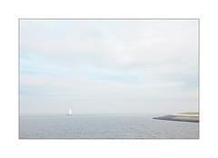 Vers le port d'Admsterdam y a des marins qui... (Scubaba) Tags: europe paysbas couleurs mer océan ciel bateau voile terre colors sea seascape ocean sky ship land paysage sail minimal minimalisme minimalism