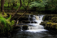 Stepped (The Frustrated Photog (Anthony) ADPphotography) Tags: breconbeacons category places riverneath theelidirtrail travel wales waterfall canon1585mm canon70d canon travelphotography landscapephotography nature natural water river woodland forest creek fall waterfalls fallingwater silkywater longexposure countryside rural green