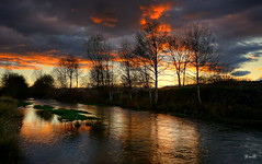 Últimas luces... (Garciamartín) Tags: paisaje crepúsculo árboles agua reflejo ribera ríocastrón naturaleza nubes santamaríadevalverde zamora castillaleón españa europa garciamartín nino nocturna