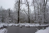 Etang gelé (StephanExposE) Tags: paris iledefrance france stephanexpose vincennes bois forest forêt arbre tree neige snow white blanc canon 600d 1635mm 1635mmf28liiusm