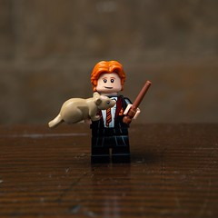 LEGO Harry Potter 71022 Collectible Minifigures (HelloBricksCom) Tags: lego harry potter 71022 collectible minifigures harrypotter rowling