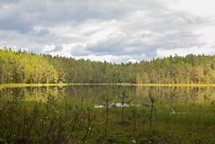 Makkarajärvi (Markus Heinonen Photography) Tags: makkarajärvi järvi lake hervanta tampere suomi finland europe maisema landscape waterscape reflection heijastus tyyni metsä forest retki retkeily luonto nature