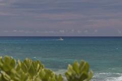 Waianae Coast Fishing (Fletch in HI) Tags: nikon d5600 tamron 16300 oahu hawaii ocean beach