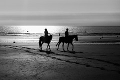Horseriding (Toftus Photography) Tags: landscape landskap outdoor nature sun sunshine sunlight sol sunset solnedgang water beach sea ocean sjø hav havet strand himmel skyer sky clouds canon eos 5d mark iv france frakrige normandie deauville