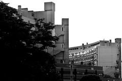 Modern freedom (Ladistorta) Tags: architecture suburbs buildings bn biancoenero blackandwhite bw cityscape periferia roma