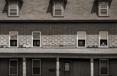 One Man's View (Jon Scherff) Tags: facade building windows alone oldhouse asphaltshingles sepia nikond810