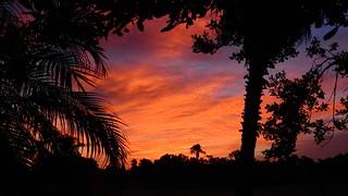 Flaming Sunrise
