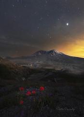 Mt St Helens at Night. (Mt St Helens National Monument, WA). (Sveta Imnadze) Tags: nature nightphotography mtsthelens wa wildflowers indianpaintbrushflowers