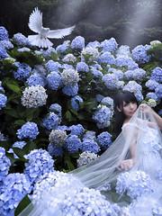 _DSF9410 (kiwi0320) Tags: fujifilmgfx50s gf3264mmf4rlmwr photobykiwilee
