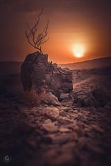 Hamri_yeah sunset (ygot) Tags: sunset moutnains rocks sky clouds desert fujifilm fujixt2 23mmf14 mtbtrails fujifilmme
