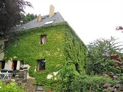 Pegau, Germany (kenjet) Tags: pegau town city saxony deutchland deutschland house haus green ivy vines landscaping grun patio garden pretty home architecture