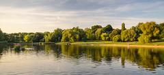 Hampstead Ponds (Joe Dunckley) Tags: britain british england english greatbritain hampstead hampsteadheath hampsteadponds london northlondon uk unitedkingdom city cityscape lake nature park tree water woodland