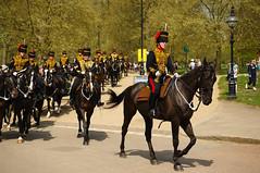The Queen's 2018 Birthday gun salute - 59 (D.Ski) Tags: 2018 queens queen birthday gun salute royal park horse horses april westminster london nikon 2470mm 200500mm thekingstrooprha thekingstroop parade thequeen hydepark d700 nikond700
