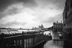 San Marco, Venezia (Air'L) Tags: venise bw noiretblanc italie architecture sanmarco filmnoir classicnoir neonoir