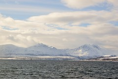 DSC_3183 (stephenholden46) Tags: tromso norway snow winter harbour arcticcircle
