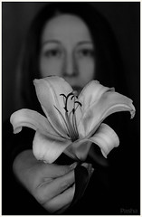 flower (pavelfadeevv) Tags: photo photography mood bw still art color monochrome blackandwhite stilllife beautiful beauty wooden vintage background light drink food fruit berries glass cup flowers nature coffee morning animals landscape