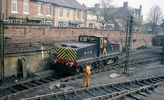 Westoe Erskine Bank Top 11 a687 (Ernies Railway Archive) Tags: hartoncoalcompany westoe ncb southshields