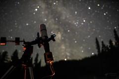 Telescope Shot (SubOrbitalBen) Tags: williamsoptics zwo rokinon rokinon24mm telescope stars yyc youresa cygnus skyguiderpro sky hubble ioptron nikon nikond750 milkyway nightphotography orion astrophotography alberta adobe space samyang spacex summer d750 deepsky galaxy kananaskis kananaskiscountry lightroom z61 explorebc canada canmore banff mountains zenithstar ngc asi071mcpro asi071mc