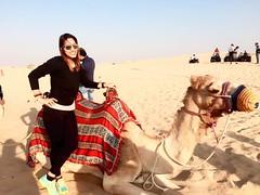 Desert Safari Dubai 65 AED WhatsApp +971552337784 www.tourtodubai.ae #DesertSafari #safari #Dubaisafari #safariadventure #reddunesafari #arabiansafari #eveningsafari #morningsafari #dunebashing #adventure #safaridubai #dubaiadventure21121_1666934276887815 (dubai travels) Tags: desert safari dubai 65 aed whatsapp 971552337784 wwwtourtodubaiae desertsafari dubaisafari safariadventure reddunesafari arabiansafari eveningsafari morningsafari dunebashing adventure safaridubai dubaiadventure