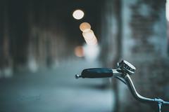 The minimal bike _ #40/100 Bike Project (pierfrancescacasadio) Tags: bicicletta gennaio2018 40100 40 bicycle 100bicycles project detailed details bikes bike cycling 100bicyclesproject minimal 50mm theminimalbike bikeproject bokeh minimalbokeh