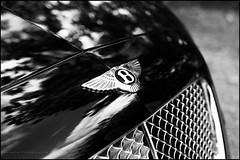 Bentley (G. Postlethwaite esq.) Tags: bw bentley bluebell dof derbyshire farnahgreen sonya7mkii badge blackandwhite bokeh cars classicvehicle depthoffield fullframe mirrorless monochrome motorbike photoborder selectivefocus