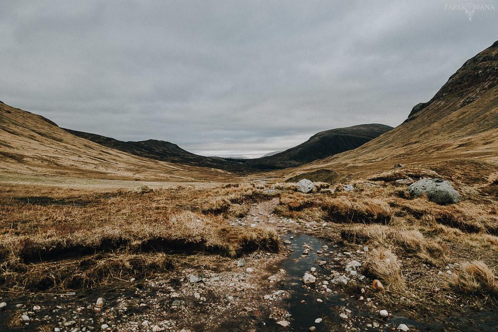449 - Szkocja - ZAPAROWANA_