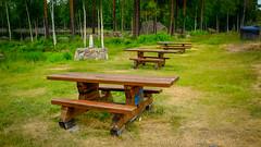 Tag 17 (2) (uwesacher) Tags: baum felsen himmel landschaft gras meer wasser wald see rastplatz tisch bank