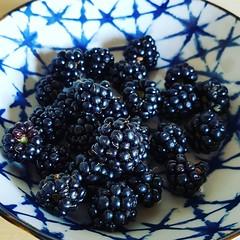 blackberries (noisy__nisroc) Tags: blackberrie fruit garden nature food
