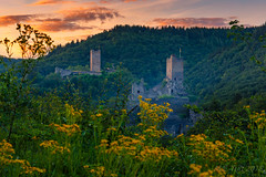 Castle @ Sunset (Marcel Tuit | www.marceltuit.nl) Tags: vulkaneifel deutschland landscape flowers nature germany nederland niederburg vakantie holland duitsland windsbornkrater wandelen eos mosenberg oberburg reis rheinlandpfalz castle landschap natuur thenetherlands sunset me bergen zonsondergang mountains eifel outdoor rhinelandpalatina vulkaaneifel bloemen geel kasteel manderscheid kleuren marceltuit goud yellow travel gold hiking wwwmarceltuitnl colors wandern wolfschlucht contactmarceltuitnl canon reizen