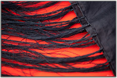 Black Scarf on orange cloth (Bear Dale) Tags: nikon d850 nikkor afs micro 105mm f28g ifed vr ulladulla south coast new wales australia dale lake conjola orange black scarf color colour macro beardale fotoworx lakeconjola shoalhaven southcoast framed silk fringe tassles photo photograph groups group flickr