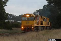 ACB4403 ACB4402 6416 empty ore Stearne Rd 6 April 2018 (RailWA) Tags: railwa philmelling esperance 2018 acb4403 acb4402 6416 empty ore stearne rd