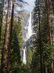 Yosemite Falls (Tim Gupta) Tags: yosemite yosemitenationalpark yosemitevalley yosemitefalls waterfall