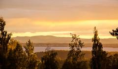 Sunset (P. Burtu) Tags: dalarna orsa orsasjön solnedgång sol sun summer sommar landskap landscape clouds moln natur nature träd tree forest skog lake sjö siljan view utsikt light ljus